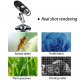 Microscopio Cámara Digital USB 1600x con 8 Leds regulables PC